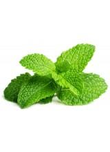 De Oro - Menta -  10 ml Aroma concentrato